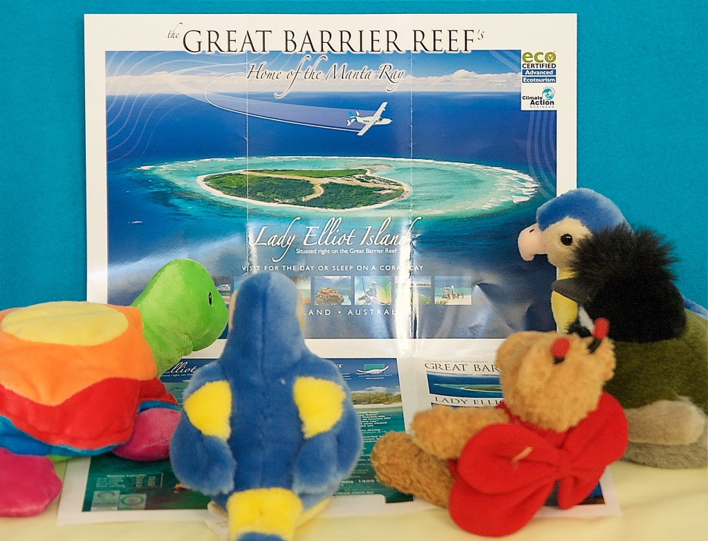 Tammy Turtle and The Birds listen enthralled as BeeBear tells of her journey to Lady Elliot Island on the Great Barrier Reef