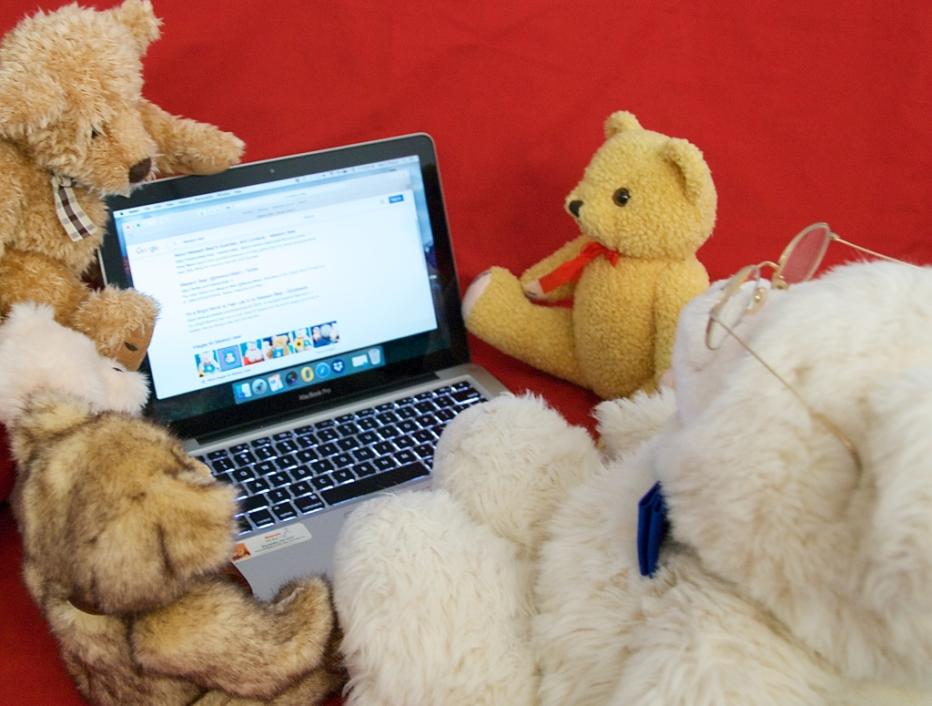 Mawson Bear is the top hit on search engines for himself.